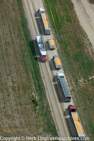 aerial photograph trucks delivering corn cattle feedlot Nebraska