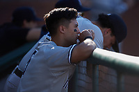 Anthony Volpe (5) of the Hudson Valley Renegades watches from the dugout during the game against the Greensboro Grasshoppers at First National Bank Field on September 2, 2021 in Greensboro, North Carolina. (Brian Westerholt/Four Seam Images)
