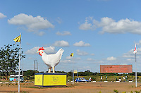 ZAMBIA Lusaka city center, advertisement of Hybrid chicken farm on roundabout