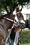 Scenes from Calder Race Course, Miami Gardens, FL 06-22-13