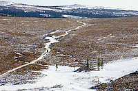 Aerial of a team runs down the ribbon of snow on the trail between Unalakleet and Shaktoolik