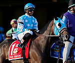 ARLINGTON HEIGHTS, IL - AUGUST 12: Oak Brook #1, ridden by Santo Sanjur, during the post parade before the Arlington Million on Arlington Million Day at Arlington Park on August 12, 2017 in Arlington Heights, Illinois. (Photo by Jon Durr/Eclipse Sportswire/Getty Images)