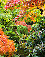 Harp Tuner (koto-ji) Lantern in Fall in the Portland Japanese Garden with bright fall colors in the trees of orange and red
