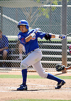 Gian Guzman / Chicago Cubs..Spring Training 2008..Photo by:  Bill Mitchell/Four Seam Images