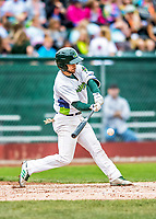 25 July 2017: Vermont Lake Monsters infielder Ryan Gridley, an 11th round draft pick for the Oakland Athletics, in action against the Tri-City ValleyCats at Centennial Field in Burlington, Vermont. The Lake Monsters defeated the ValleyCats 11-3 in NY Penn League action. Mandatory Credit: Ed Wolfstein Photo *** RAW (NEF) Image File Available ***