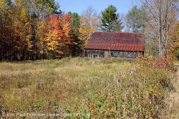 Autumn colors along Bog Road in Campton, New Hampshire USA.