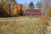 Autumn colors along Bog Road in Campton, New Hampshire USA.