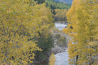 , Dolores, San Juan National Forest, Colorado, USA, September 2007