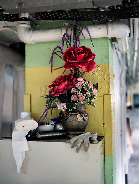 Flora, Plastikblume, Garage, trist, Hongkong, China, 2003, Hong Kong Flora<br />  ***Keine Social_Media Nutzung***<br /> <br /> Engl.: Asia, China, Hong Kong, urban flora, plant, plastic flowers, garage<br /> ***No social media use***