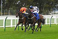 Horse Racing Salisbury 03-09-20