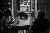 malati terminali e cure palliative, hospice e cure a domicilio, associazione Palma Como