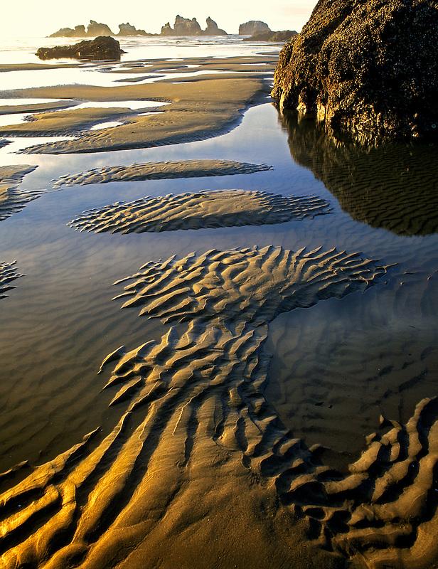 Low tide  pools and rippled sand at Bandon Beach, Oregon