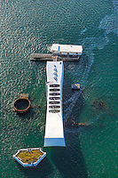 Oil still leaks from the USS Arizona Memorial, Pearl Harbor, O'ahu.
