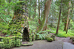 """""""Portland's Secret Garden"""",  Leach Garden was established by JOhn and Lilla Leach in the 1930's.  The Garden continues as a public place of respite and native northewest botanical display.  Operated by the city of Portland, Oregon.."""