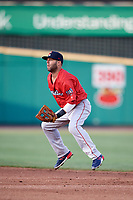 Boston Red Sox second baseman Dustin Pedroia (15), on rehab assignment with the Pawtucket Red Sox, in the field during a game against the Rochester Red Wings on May 19, 2018 at Frontier Field in Rochester, New York.  Rochester defeated Pawtucket 2-1.  (Mike Janes/Four Seam Images)