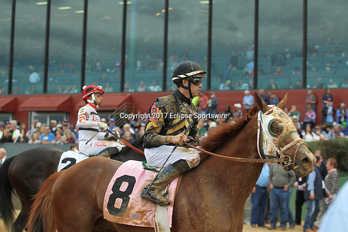 HOT SPRINGS, AR - FEBRUARY 20: #8 Goats Town, with Chris Landeros aboard, after the running of the Razorback Handicap at Oaklawn Park on February 20, 2017 in Hot Springs, Arkansas. (Photo by Justin Manning/Eclipse Sportswire/Getty Images)