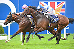 Noble Mission (no. 3), ridden by James Doyle and trained by Lady Cecil, wins the group 1 Champion Stakes for three year olds and upward on October 18, 2014 at Ascot Racecourse in Ascot, Berkshire, United Kingdom.  (Bob Mayberger/Eclipse Sportswire)
