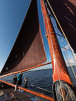 Segelschiff Willem Jacob auf dem Lauwersmeer, Provinz Groningen, Niederlande