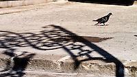 """""""Puglia:Sedici:Noni"""" è un progetto fotografico a lunga scadenza che ha la pretesa di raccontare il Salento per set inconsistenti e inconsapevoli. Non immagini da cartolina, non scene intrecciate tra voci e territorio, ma set casuali, luoghi di scena involontari, teatri lasciati volutamente vuoti prima di girare la scena affinché non vengano """"sporcati"""" da alcuna presenza. Set di comparse protagoniste, voci di una sceneggiatura ideata e tralasciata perché altri ne abbiano beneficio senza saperlo. La scelta del formato 16:9 (da cui il titolo del progetto Puglia:Sedici:Noni) è dovuta al desiderio di una rappresentazione non consueta che richiami allo stesso tempo il concetto di cinema e coinvolga la visione ampliata dell'occhio umano. Tale formato è quello proporzionale utilizzato dalle nuove tecnologie nel campo dell'alta definizione. Il formato sta via via sostituendo il 4:3 lasciando fissa l'altezza dello schermo ma aumentando la lunghezza del 33%: tale formato è quello che più si avvicina alla visione dell'occhio umano in quanto, anche se il campo visivo sia effettivamente di 4:3, il cervello elabora le informazioni estendendo la visione in lunghezza. La scelta di un formato esteso dunque non è vincolato alla sola dimensione ma all'arricchimento con l'introduzione del fattore emotivo che altro non occupa se non il 33% aggiunto."""