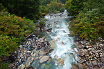Rio Cisnes along side the Carretera Austral highway, Aisen Region, Patagonia, Chile, South America