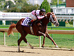September 12, 2015:  Bandwidth and Shaun Bridgmohan win the 6th race, maiden for 2 year old colts.  Candice Chavez/ESW/CSM