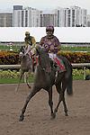 July 05, 2014:  C. Zee (FL) with jockey Abdiel Jaen  on board wins the Cherokee Run Stakes at Gulfstream Park in Hallandale Beach FL. Liz Lamont/ESW/CSM