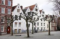 Nederland  Amsterdam   feb. 2021.  Achtergevels van huizen die aan het Begijnhof staan.   Foto Berlinda van Dam / HH / ANP.