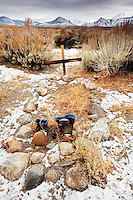 Grave of the unknown prospector, eastern Sierras, Mono Basin National Forest Scenic Area, near Lee Vining, California, USA
