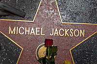 Michael Jackson Memorial at Staples Center in Los Angeles, CA, USA July 2009