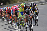 MTN-Qhubeka on the front of the peloton during Stage 7 of the 2015 Presidential Tour of Turkey running 166km from Selcuk to Izmir. 2nd May 2015.<br /> Photo: Tour of Turkey/Mario Stiehl/www.newsfile.ie