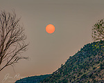Smokey Sunrise over Woods Canyon.  Smoke from massive – and tragic - wildfires in California has combined with smoke from a smaller Arizona fire to create this otherworldly scene over the Coconino National Forest south of Sedona.<br /> <br /> Image ©2020 James D. Peterson
