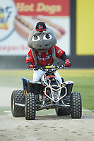 "Carolina Mudcats mascot ""Muddy"" rides a four-wheeler between innings of the 2018 Carolina League All-Star Classic at Five County Stadium on June 19, 2018 in Zebulon, North Carolina. The South All-Stars defeated the North All-Stars 7-6.  (Brian Westerholt/Four Seam Images)"