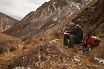 Snow Leopard (Panthera uncia) biologist, Shannon Kachel, taking notes on Siberian Ibex (Capra sibirica) killed by snow leopard, Sarychat-Ertash Strict Nature Reserve, Tien Shan Mountains, eastern Kyrgyzstan