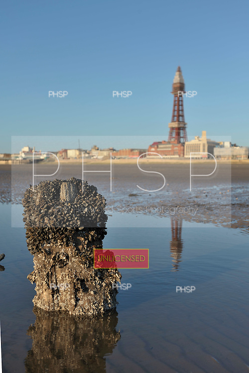 18/03/2011 Barnacle encrusted former jetty support beyond Central Pier, Blackpool Lancashire UK.......© Phill Heywood.