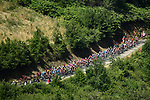 The peloton in action during Stage 8 of the 2019 Tour de France running 200km from Macon to Saint-Etienne, France. 13th July 2019.<br /> Picture: ASO/Alex Broadway   Cyclefile<br /> All photos usage must carry mandatory copyright credit (© Cyclefile   ASO/Alex Broadway)
