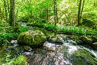 France, Saone et Loire, Regional Natural Park of Morvan, Roussillon en Morvan, Gorges de la Canche // France, Saône-et-Loire (71), Parc naturel régional du Morvan, Roussillon-en-Morvan, gorges de la Canche