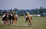 Polo Camp. Summer holidays, pony club week long polo camp. Lingfield Surrey England.