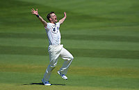 Canterbury's Andrew Hazeldine appeals during day one of the Plunket Shield cricket match between the Wellington Firebirds and Canterbury at Basin Reserve in Wellington, New Zealand on Tuesday, 29 October 2019. Photo: Dave Lintott / lintottphoto.co.nz