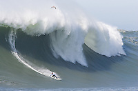 Grant Twiggy Baker rides the wave at the 2010 Mavericks Surf Contest in Half Moon Bay, California on February 13th, 2010.