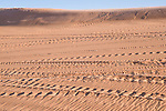 Coral Pink Sand Dunes State Park, Kanab, Utah; tire tracks from off-highway vehicles (OHV) cut across the ripples in the sand dunes