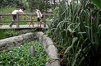 "Inside the ""Living Water Garden"" in Chengdu, Sichuan Province. The garden is a park aimed at highlighting the importance of the relationship between man and water. 2010"