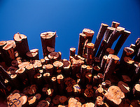 1998 File Photo, <br /> wood log near the St-Michel des Saints<br /> wood panel factory, now owned by Louisian Pacific which shut it down in august 2006, because of wood low price, strond Canadaian Dollar and increased cutting fees inposed by Quebec Government.<br /> (c) Pierre Roussel