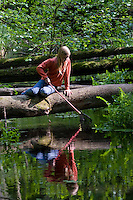 Mädchen, Kind keschert an einem Bach im Wald, keschern, Kescher