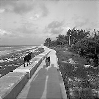 "2+2+Ocean<br /> From ""The other places"" series. Grand Bahama Island, 2010"