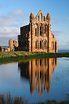 Great Britain, England, North Yorkshire, Whitby: Ruins of 13th century Benedictine Abbey at sunrise