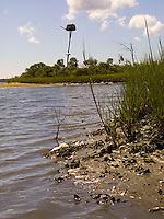 Birds nest on pole over grasses<br />