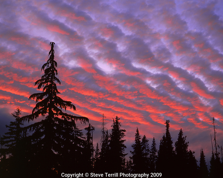 Three Sisters wilderness with vivid colors of sunset painting clouds about forest