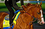 LOUISVILLE, KY - MAY 01: Justify, trained by Bob Baffert, exercises in preparation for the Kentucky Derby at Churchill Downs on May 1, 2018 in Louisville, Kentucky. (Photo by John Voorhees/Eclipse Sportswire/Getty Images)