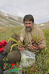 1171 Yukon, Discovering New Plant Species Among Glaciers