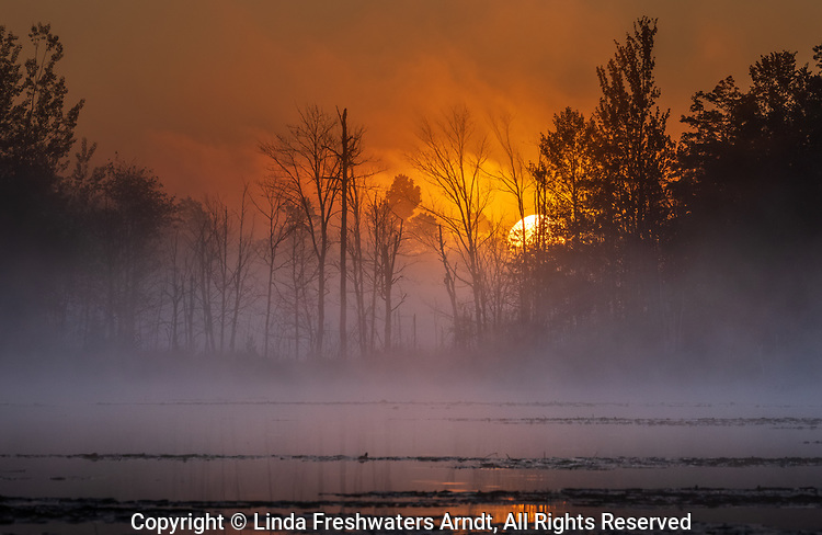 A misty sunrise on a wilderness lake in northern Wisconsin.